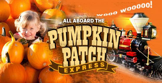 pumpkinpatch-550