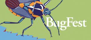 BugFest 2014